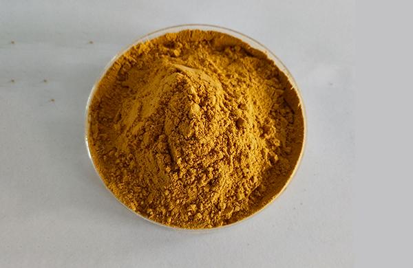 Schizochytrium Algae Powder
